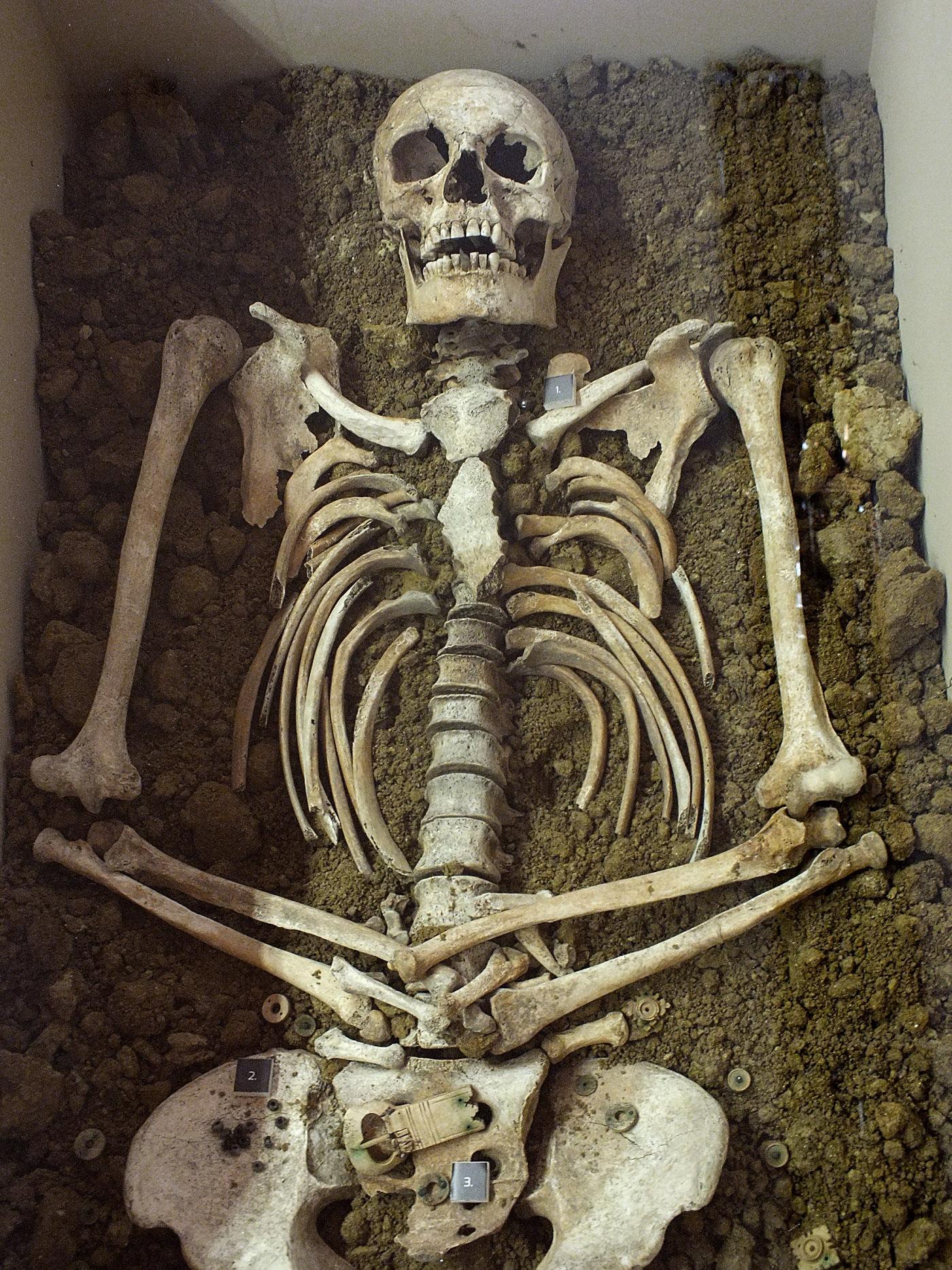 A kun női sír <br />(Perkáta, Nyúli-dűlő, Fejér megye)