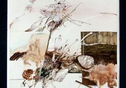 Fészek, 1984, akvarell, tus, papír, 42,5x30,5 cm