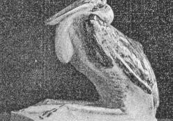 Marabu, kerámia