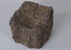 Memento mori, 2007, fa, papír, acélpor, 24 cm