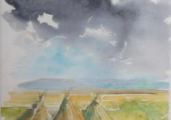 Nádkúpok, 2009, papír, akvarell, 65x50 cm