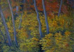 Sarjadék, 2008, vászon, olaj, 50x60 cm