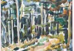 Vonyarci fenyves, aquarell, 2004, papír