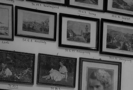 Bemutatkozik a gyűjteménykezelő – Dömötör Andrea